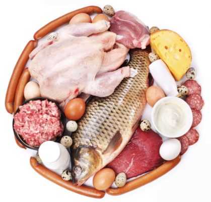 Negative Effects of Protein Diet