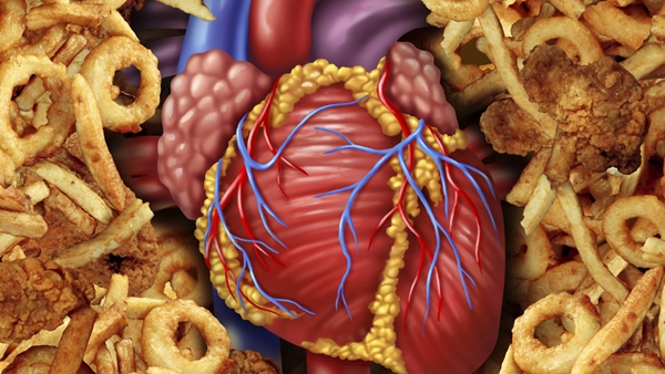 Heart Health Depends on Your Healthy Diet