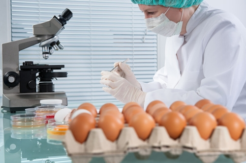 Foodborne illness Identification