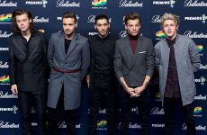 One Direction's Harry Styles, Niall Horan, Liam Payne, & Former Member Zayn Malik Fitness Routines to Stay Fit