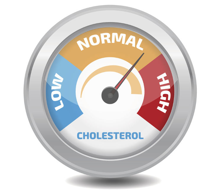 Cholesterol Regulation