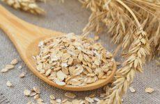 wheat vs oatmeal