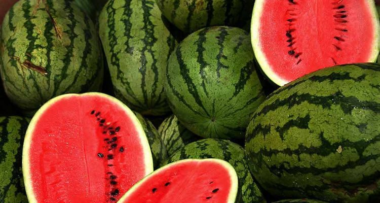Is Watermelon Good for Diabetes