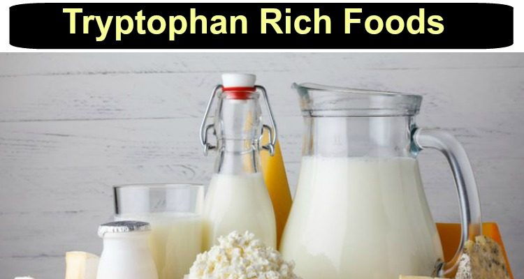 Tryptophan rich foods