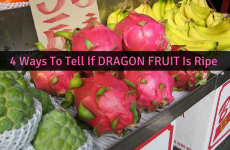 How To Tell If Dragon Fruit Is Ripe