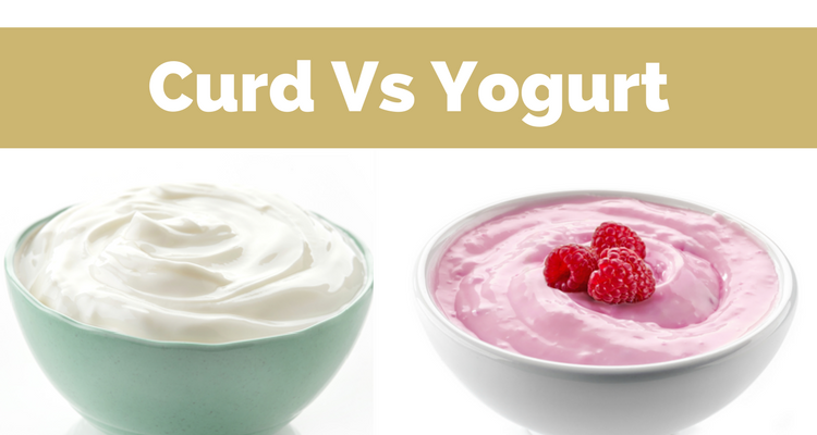 Curd vs Yogurt