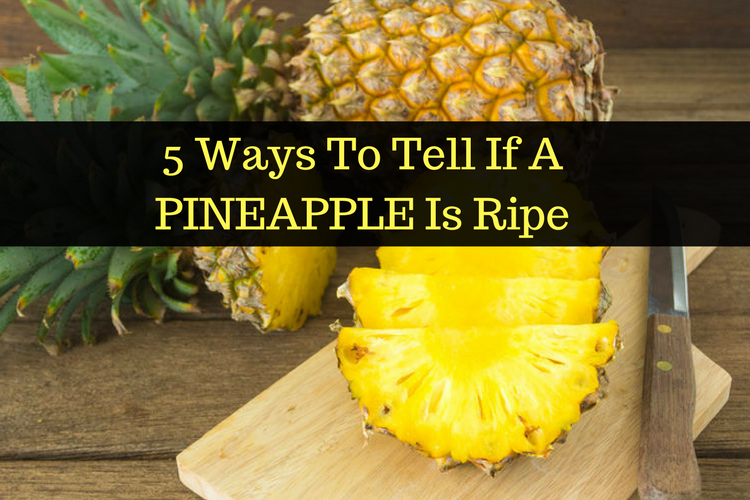 how to know when a pineapple plant is ripe
