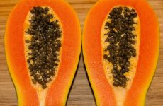 Papaya Seeds for Parasite
