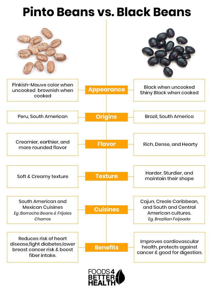 Black-Beans-vs-Pinto-Beans