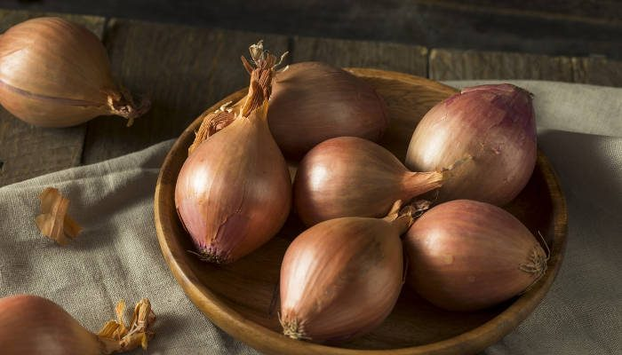 onions vs shallots